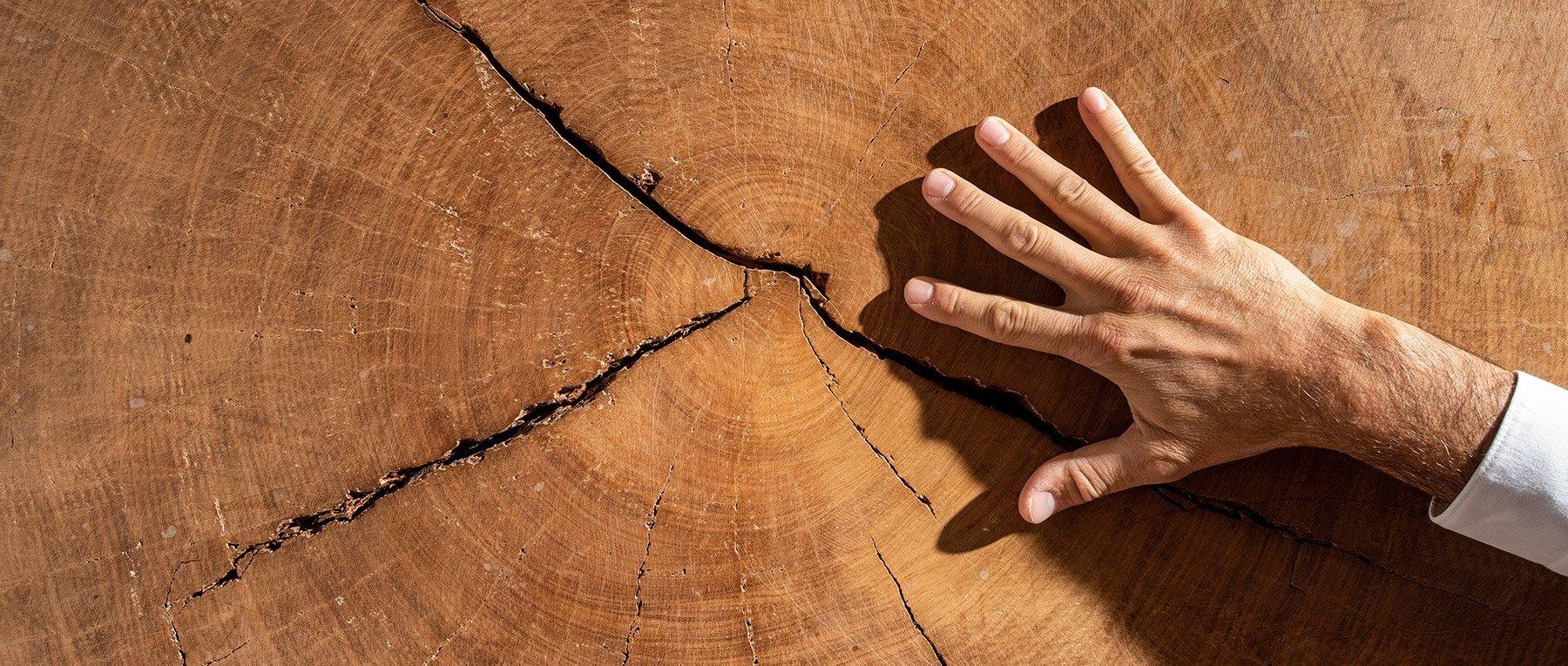 Legnami Paganoni - Legname per edilizia, falegnamerie e arredo